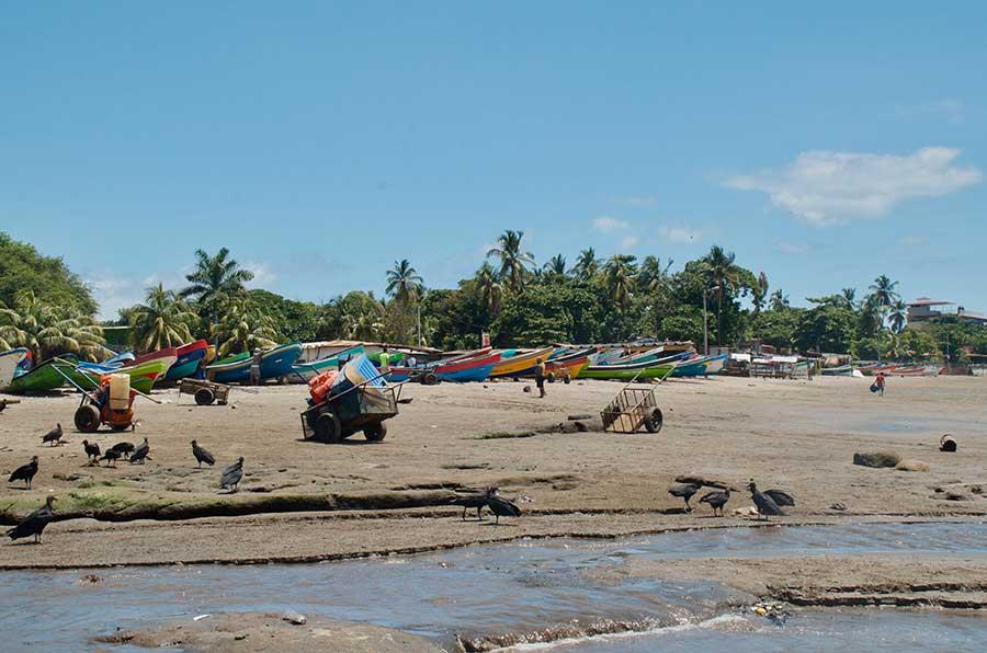 zopilotes playa masachapa