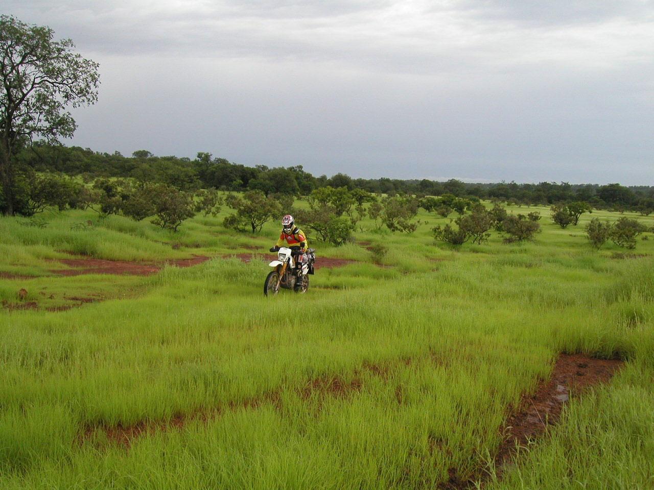 En moto por Niokolo Koba